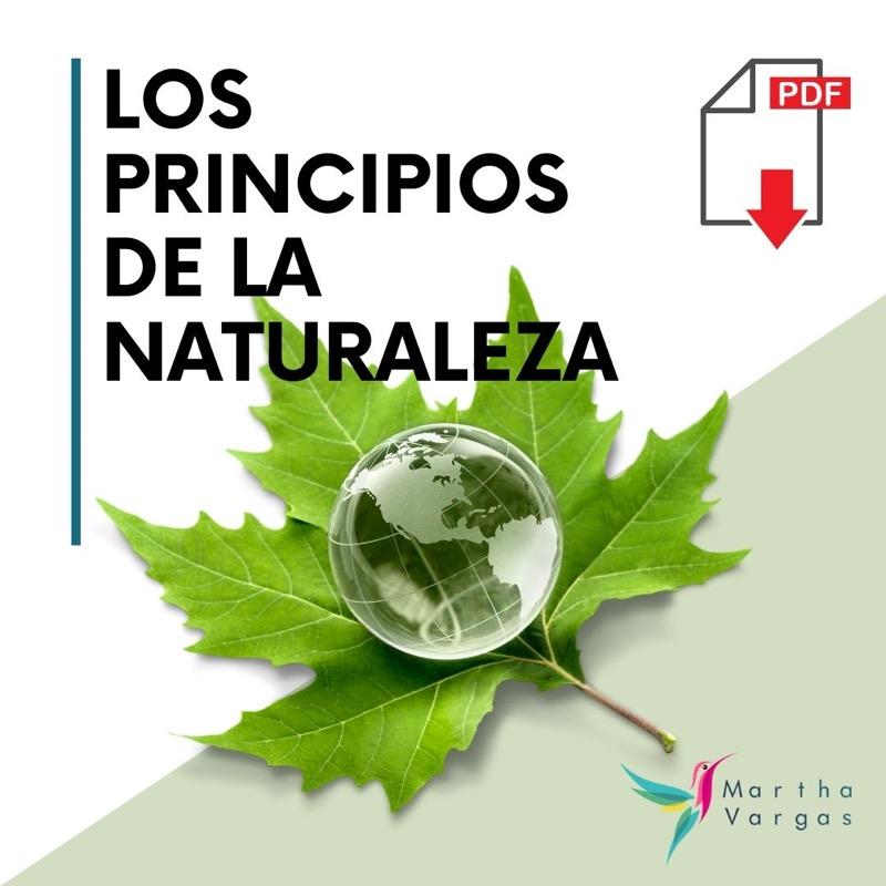 LOS PRINCIPIOS DE LA NATURALEZA.